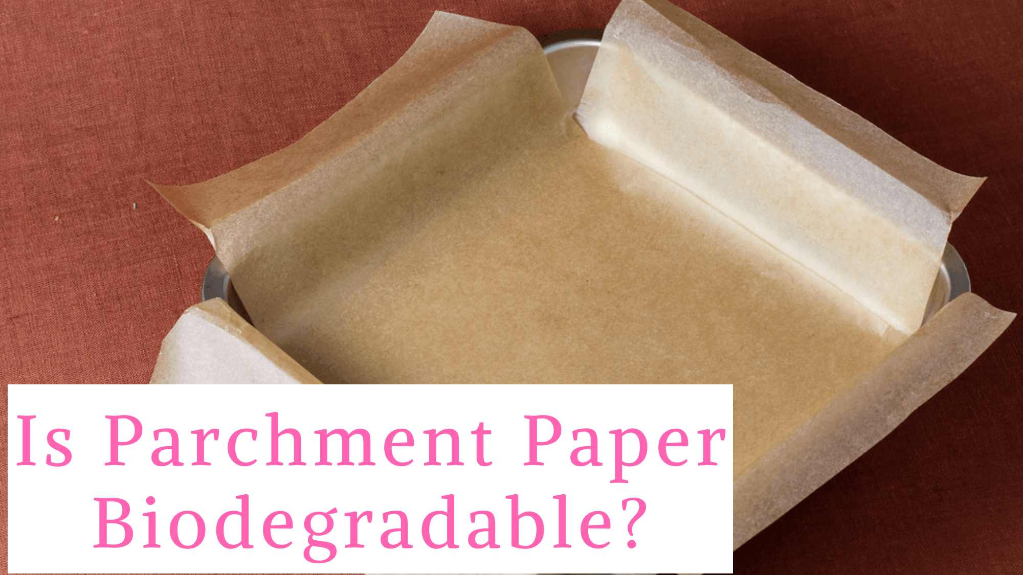 Is Parchment Paper Biodegradable and Compostable?