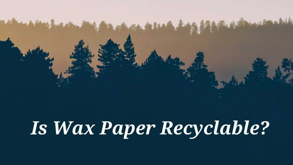 Is Wax Paper Recyclable