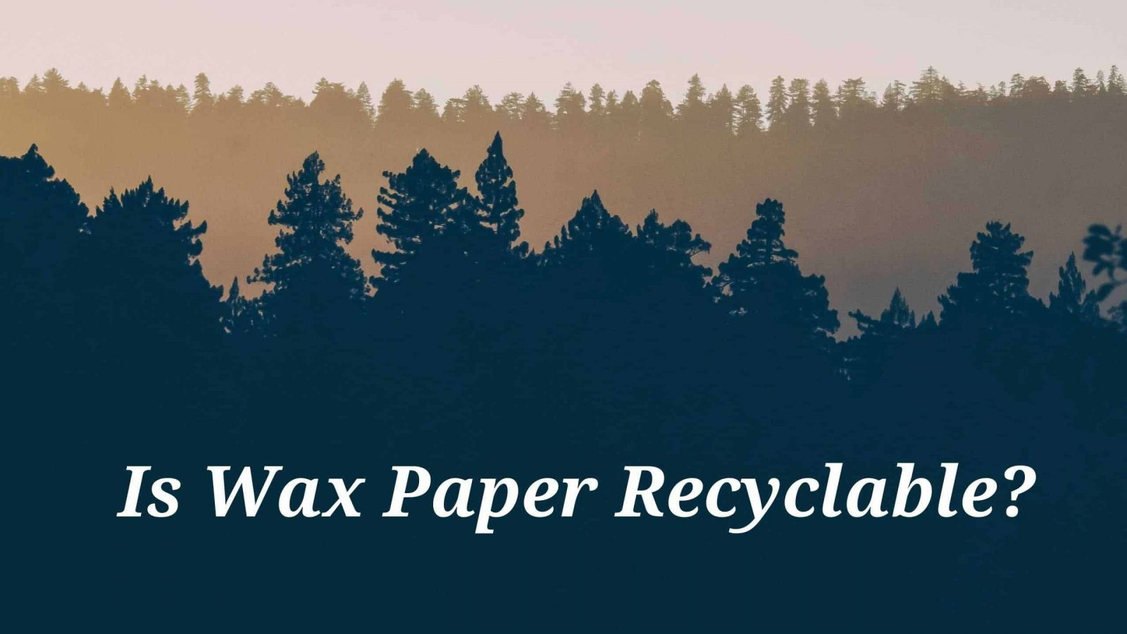 Is Wax Paper Recyclable?