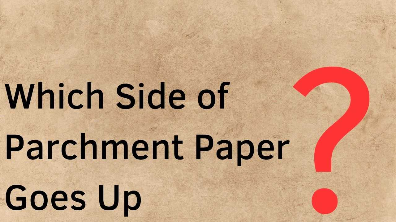 Which Side of Parchment Paper Should Goes Up?
