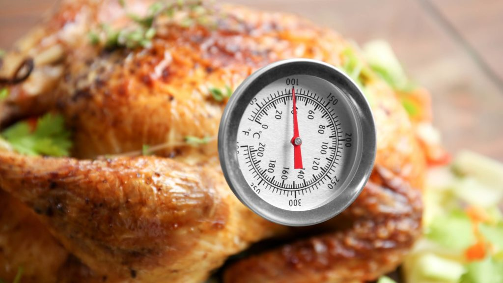 Oven Thermometer on Meat
